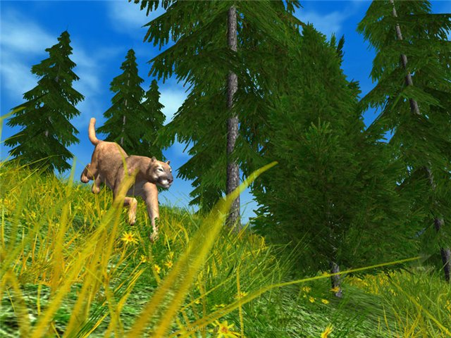 Игру Hunting Unlimited 2008